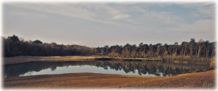 Baggersee-Landschaft