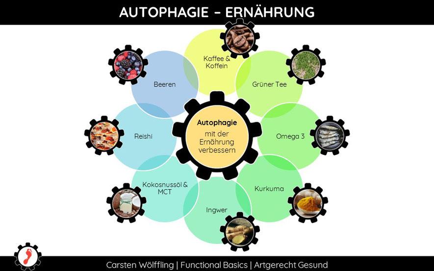 Was essen für Autophagie?