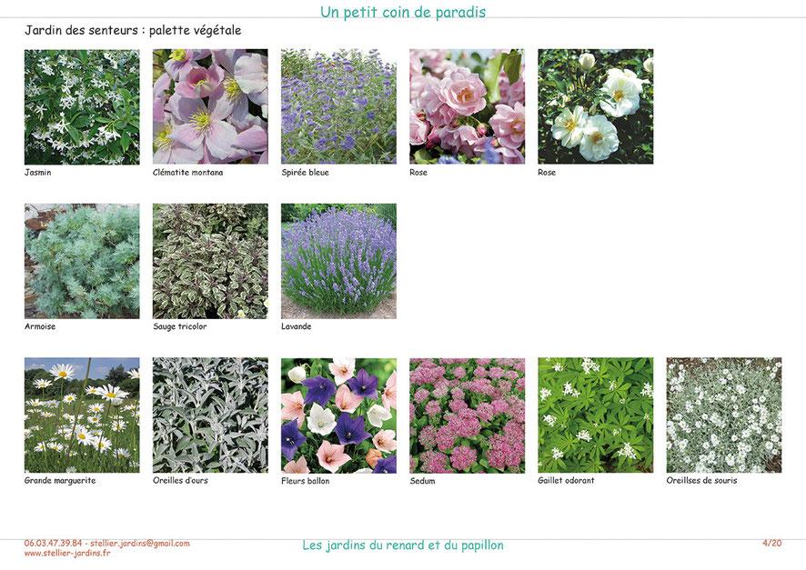 Palette végétale du jardin des senteurs