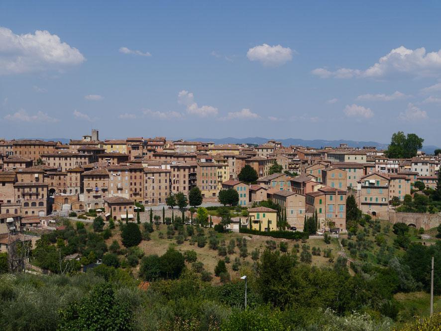 Blick über die Altstadt von Siena