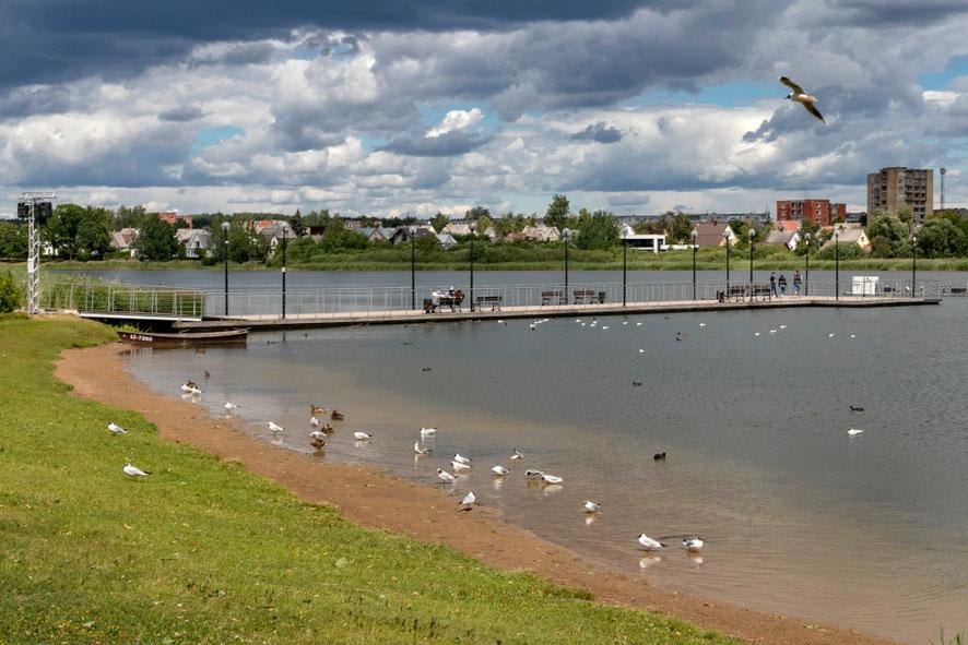 Dauniškio ežeras telkšo Utenos miesto viduryje
