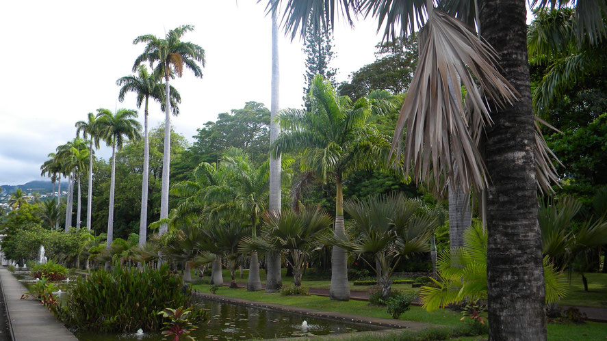 Botanischer Garten in Saint-Denis