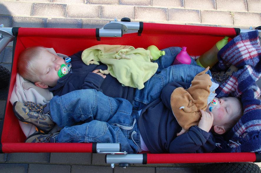Zwillingsschlaf im Touren-Theo faltbarer Bollerwagen einmalig genial