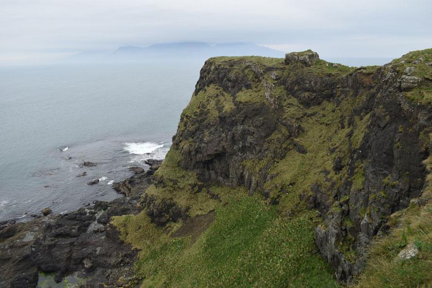 Horse Island, Muck