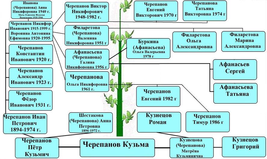 Древо рода Черепановых
