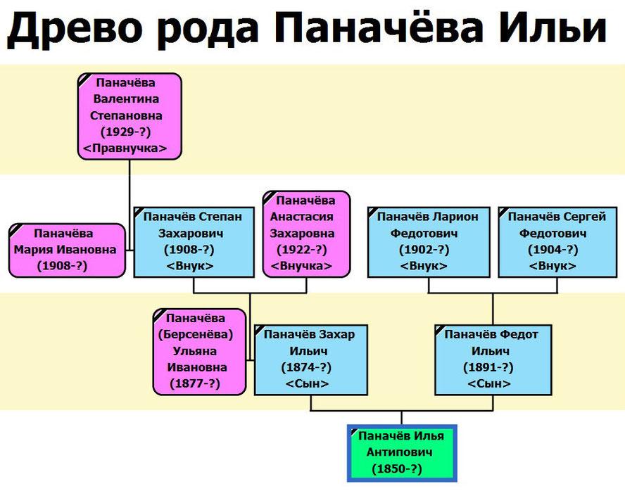Древо рода Паначёва Ильи Антиповича