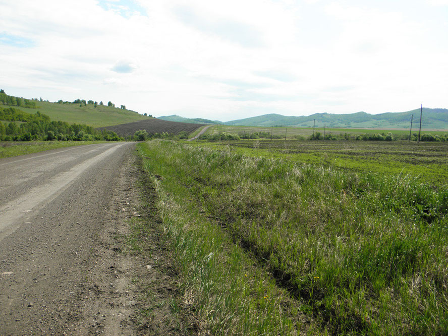 Вопилов лог. Вид с дороги Екатериновка – Мензот. 2012 г.