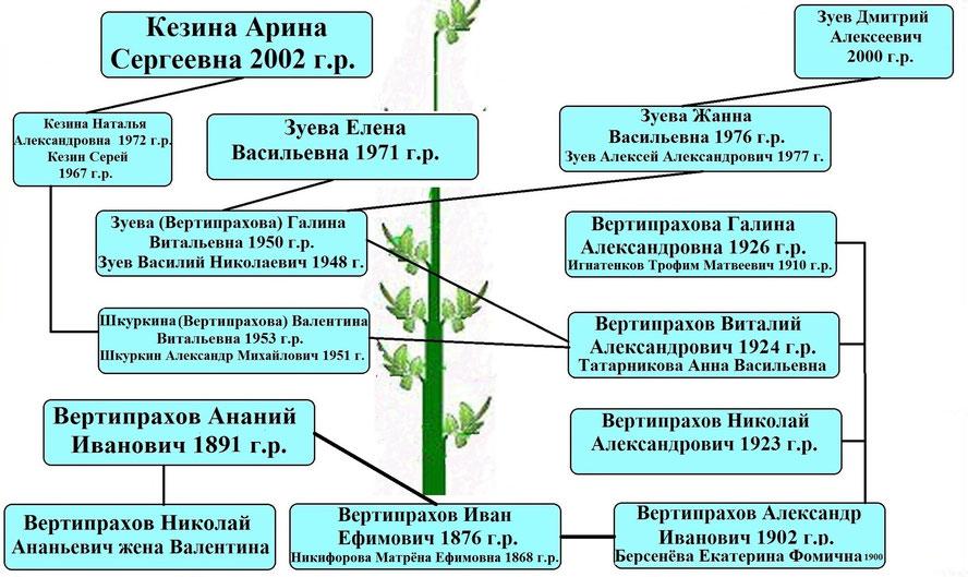 Древо рода Вертипрахова Ивана