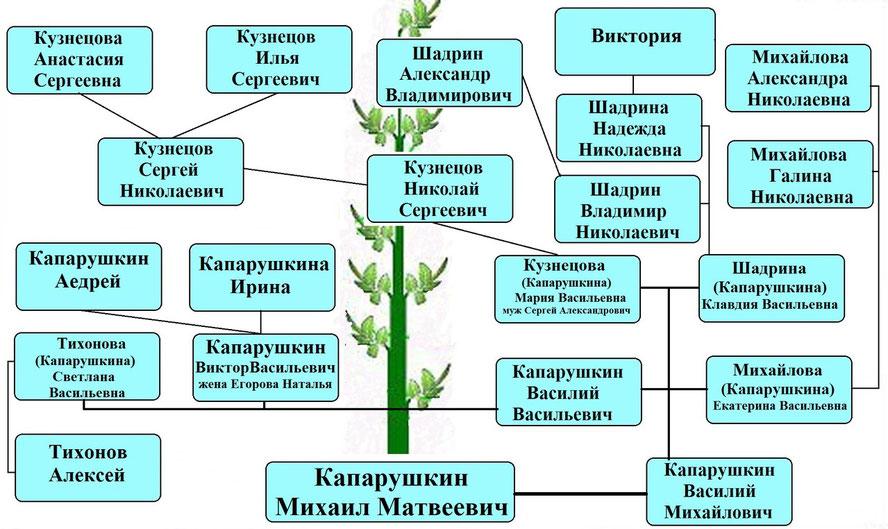 Древо рода Капарушкина М.М.