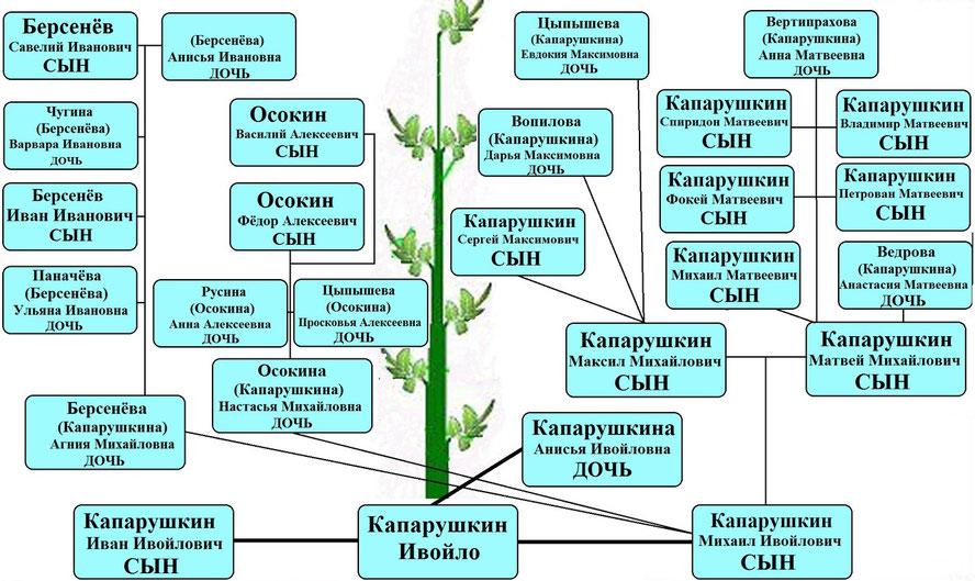 Древо рода Капарушкина Ивойло