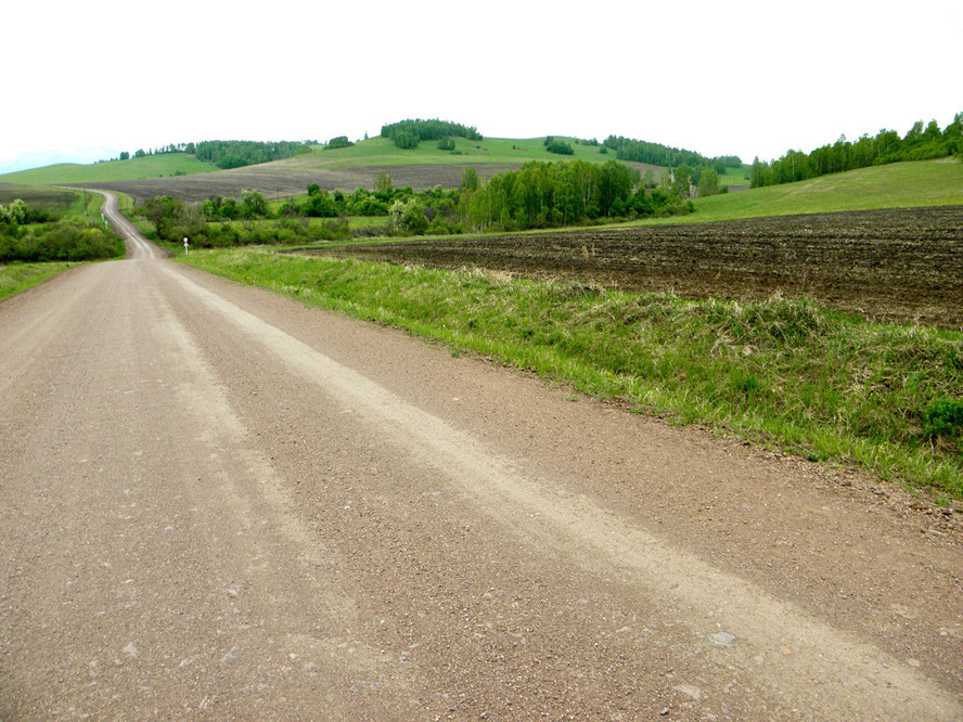 Вопилов лог. Вид с дороги Мензот – Екатериновка. 2012 год.