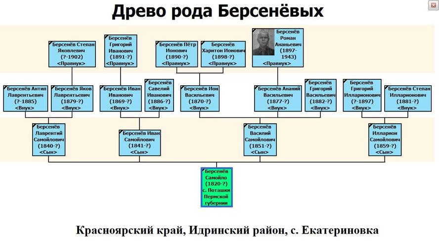 Древо рода Берсенёвых с. Екатериновка