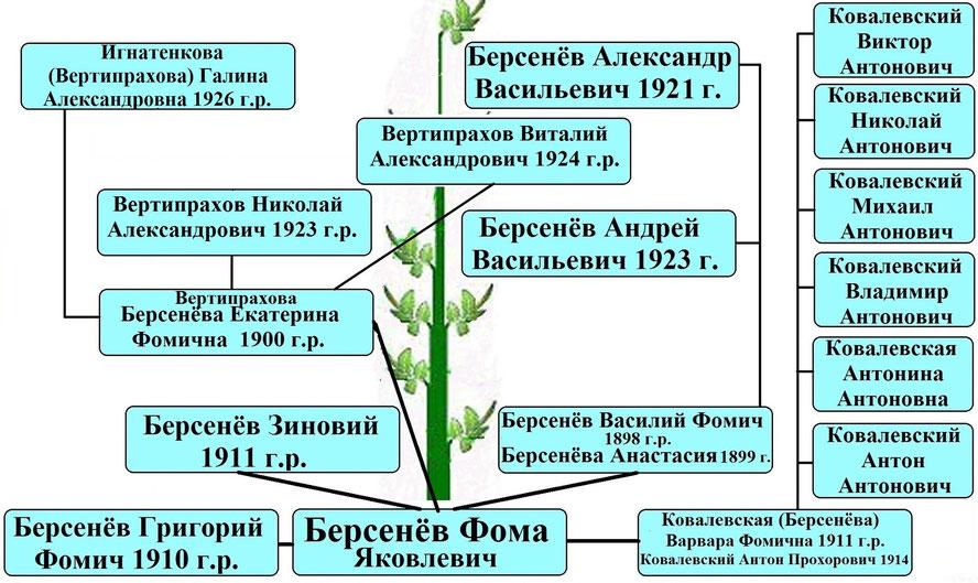 Древо рода Берсенёва Фомы