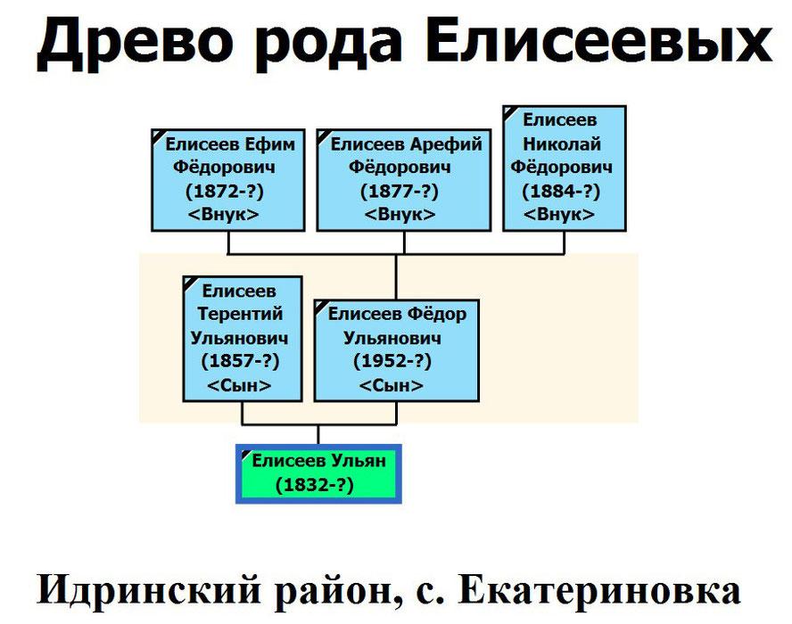 Древо рода Елисеева Ульяна