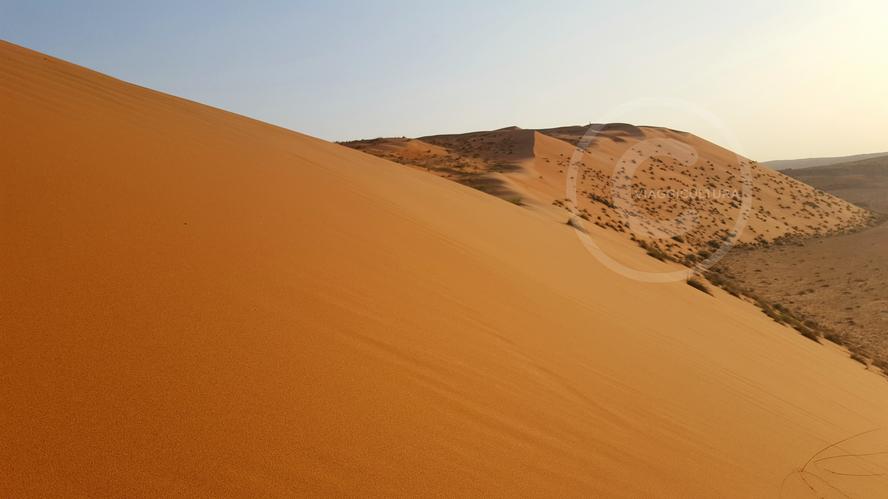 Le dune del deserto amanita