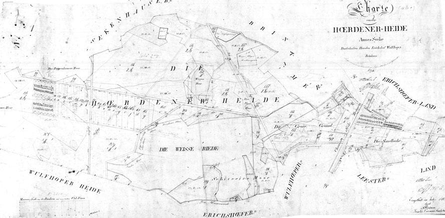 Charte von der Hördener Heide im Amt Sycke  1828  aufgenommen und chartiert im Jahre 1826  20