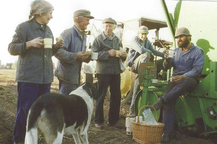 Kartoffelernte 1983 auf dem Feld des Hofes Brüning (Lahausen):     Vesperpause im Herbst 1983 bei der Kartoffelernte 7: v.l.: Lisa Brüning, Cord Brüning, Otto Frank, Jens Hünten, Gerd Brüning
