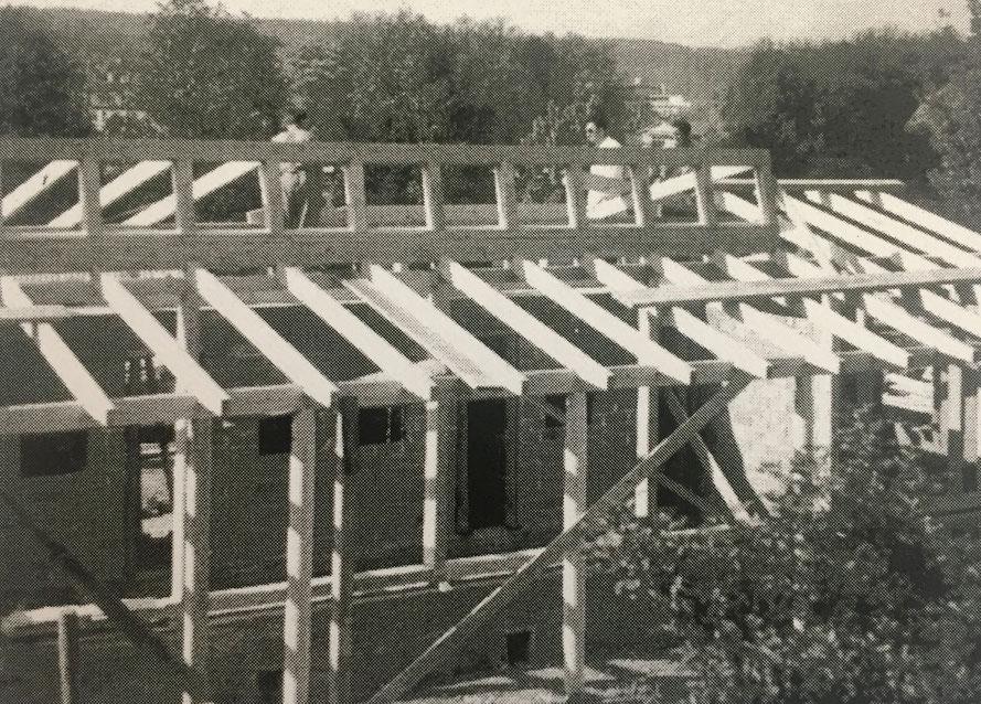 Neubau der Voliere an der Rötistrasse 1954
