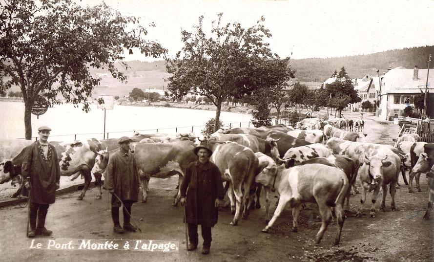 Fine maggio, primi di giugno, mandrie che se ne vanno all'alpeggio, traversano il villaggio di Le Pont