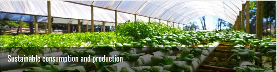 Bild: https://sustainabledevelopment.un.org/topics/sustainableconsumptionandproduction