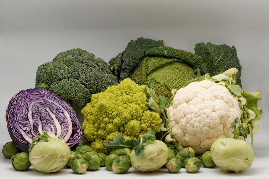 Les choux, aliments nutritifs d'automne à consommer crus ou cuits.