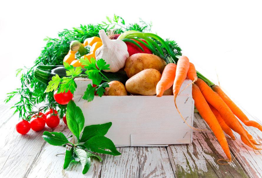 Rezepte aus Garten & lecker