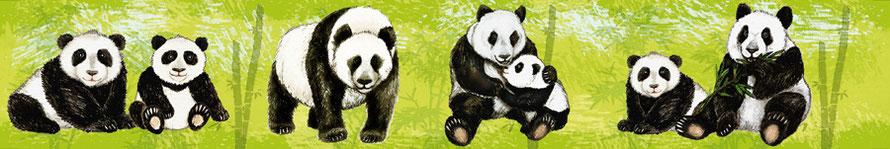 nachhaltige Vliesbordüre mit Pandabären im Bambuswald, nach Aquarellart, Motive liebevoll per Hand gemalt