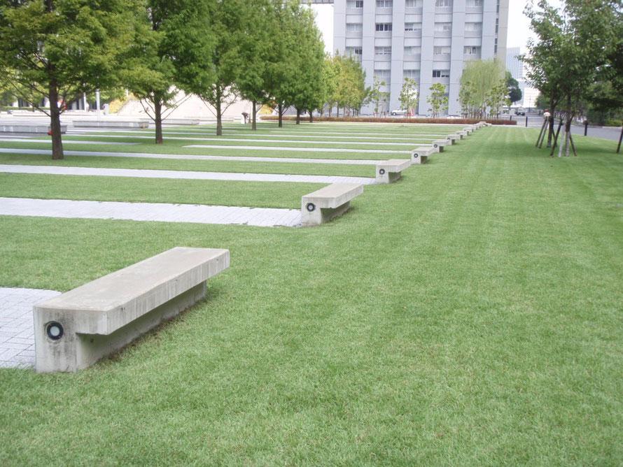 2010年09月17日 芝浦工業大 豊洲キャンパス  ノシバ(エルトロ)