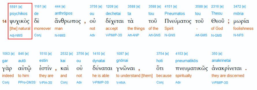 Interlinearübersetzung zu 1. Korinther 2,14