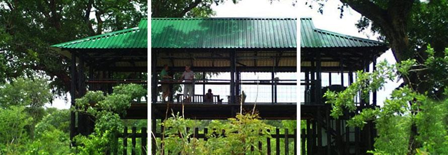 Jafuta Foundation - Wildlife conservation - Ecotourism - Kalisosa Platform - Zimbabwe