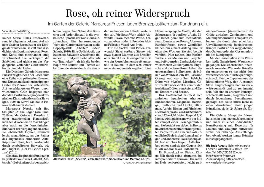 """Rose, oh reiner Widerspruch"", the article in Dresdner Neueste Nachrichten (DNN) with the photo by Klaus-Dieter Weber"
