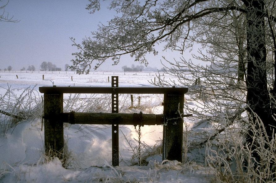 Leester Marsch - Sperrwerk im Winter