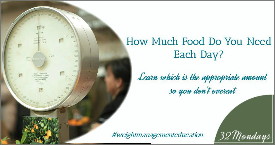 How Much Food do You Need Each Day