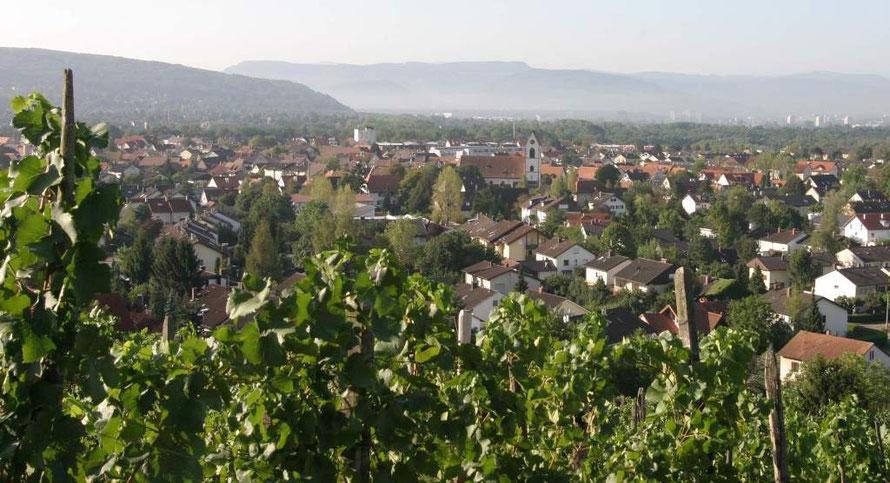 """<img src=""""Weil am Rhein.jpg"""" alt=""""Blick vom Tüllinger"""">"""