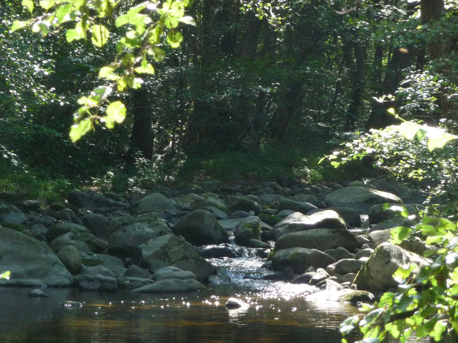Domaine de pierrageais au bord de la riviere la Daronne