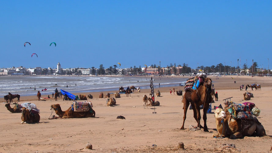 Essaouira, Marokko, Oceaan