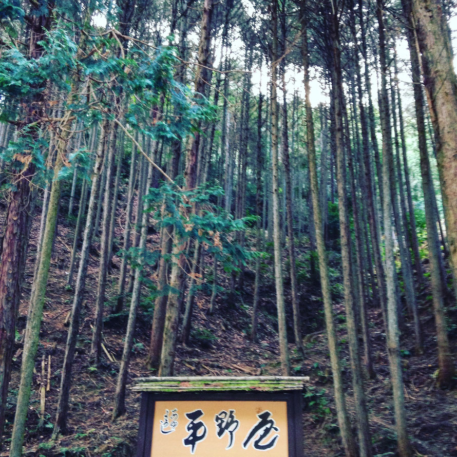 Arashiyama, Kioto.