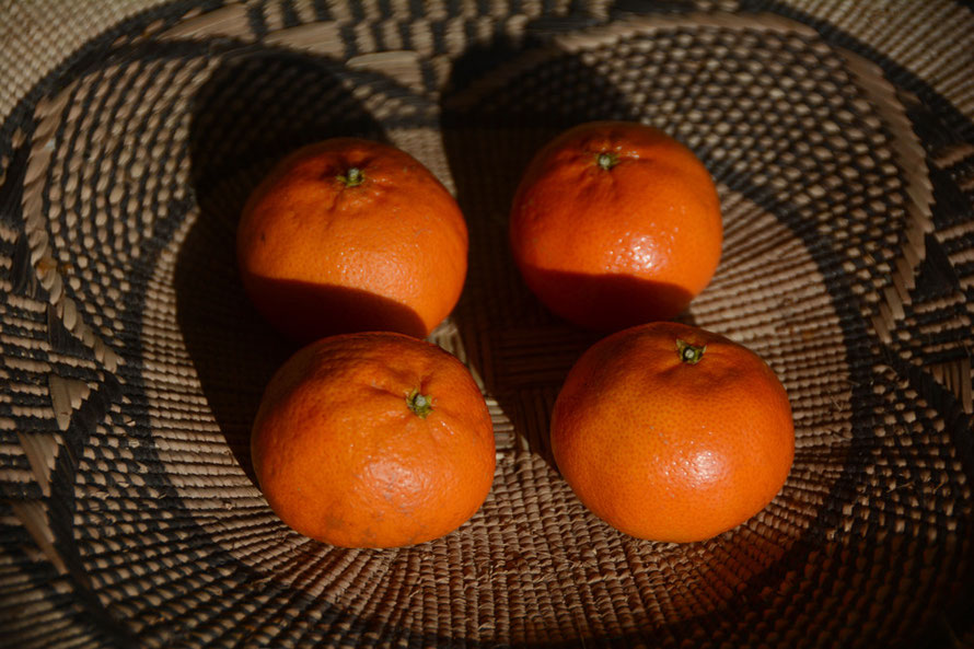 Four clementines, a Zulu basket and the winter sun.