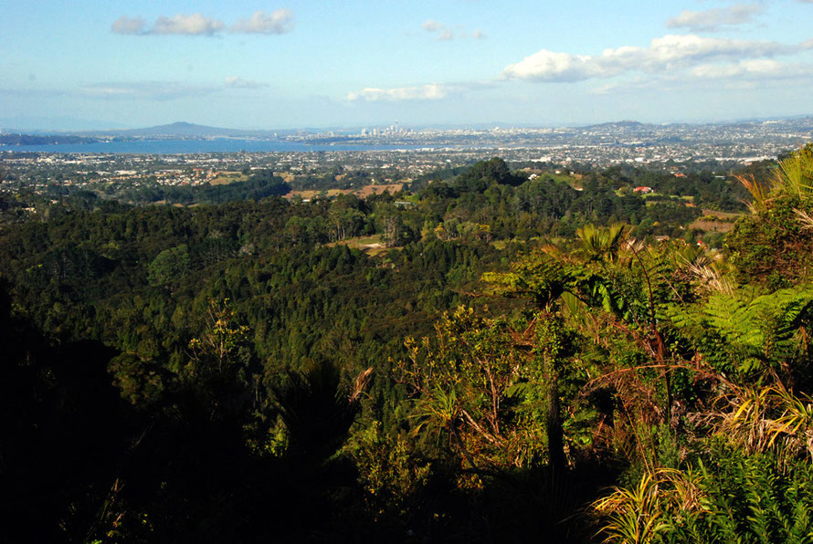 Auckland from the Scenic Route in the Waitakere Ranges north west of the city. The Waitemata Harbour is in front of the downtown skyline and Rangitoto Island is on right.