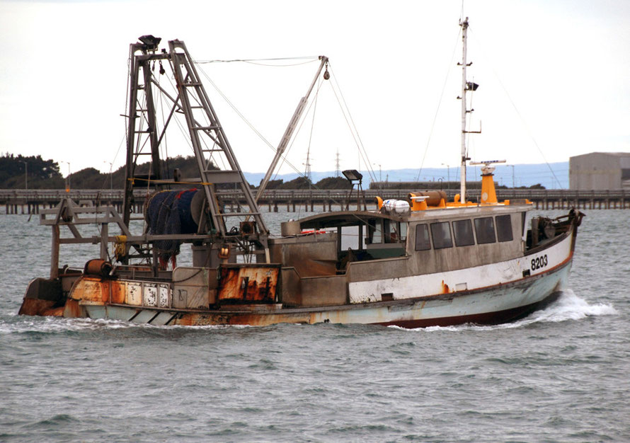 Fishing boat leaving Bluff harbour for the Foveaux Strait. The Strait is home to the famed Bluff Oyster.