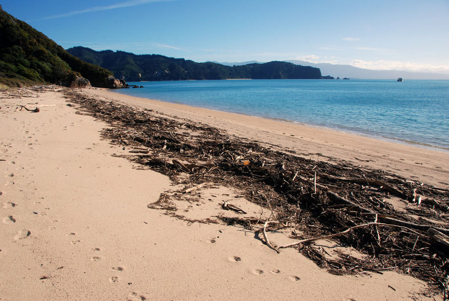 Looking out across Golden Bay to Abel Tasman Point.