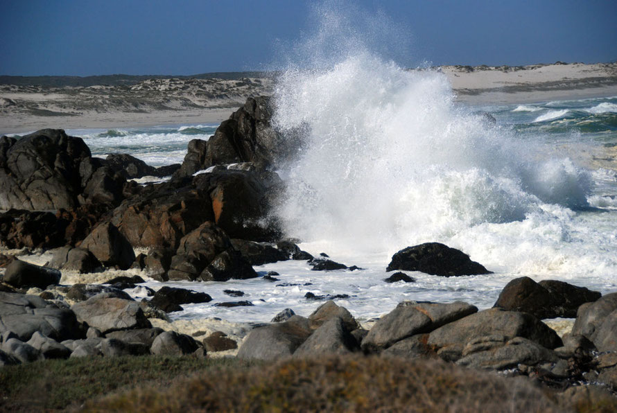 Big seas at Tsaarsbank in the West Coast National Park