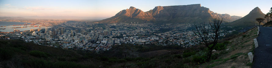 Panorama of Harbour and City Bowl and from left Devil's Peak, Table Mountain, Twelve Apostles, Lion's Head and in foreground burnt tree and bank still smoking from recent fynbos fire