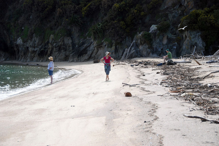 The tide coming in and blocking the Taupo Head path by the sand spit in Wainui Bay.