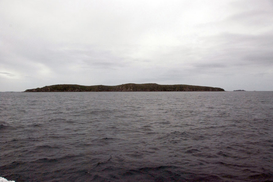 The desolate looking island of Ruapuke mid-way in the Foveaux Strait, home to the Rev Wohlers and his wife, Eliza Hanham and 200 Kai Tahu Maori under their chief Tuhawaiki in the 19th century. It is n
