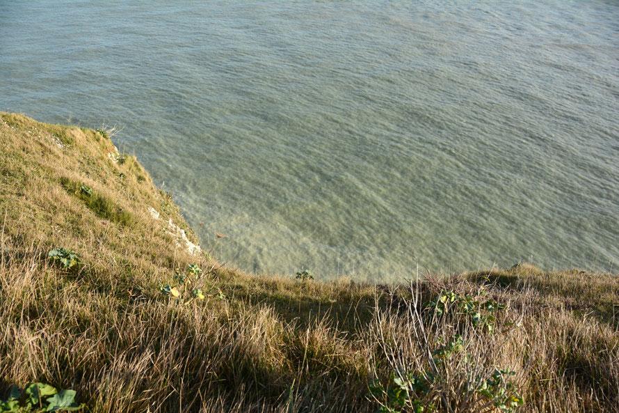 The milky green sea.
