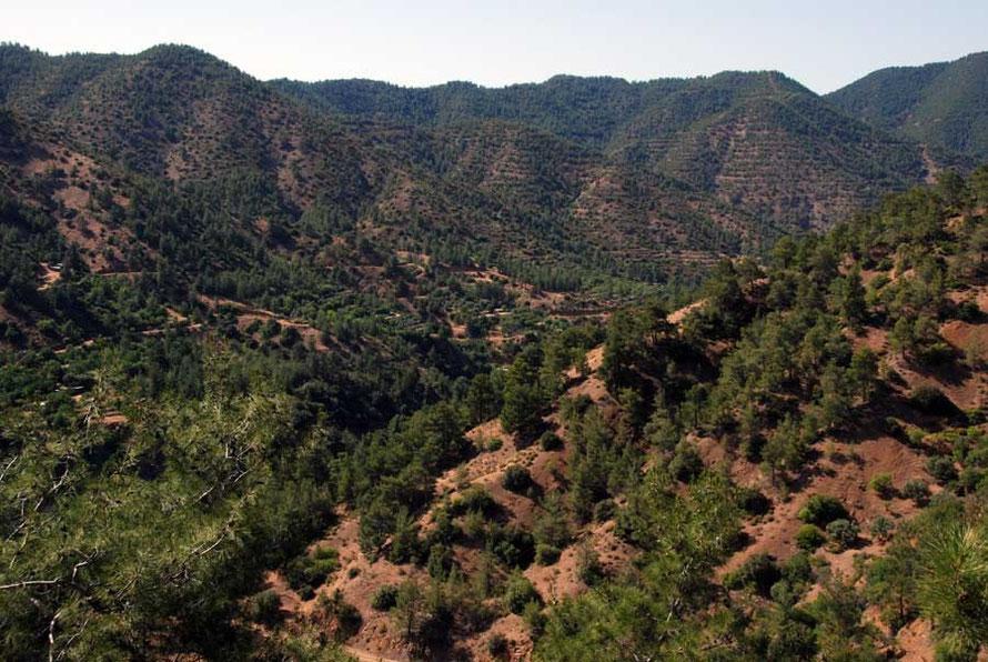 The softer sandier hills of gentler erosion and reafforestation below Kampos