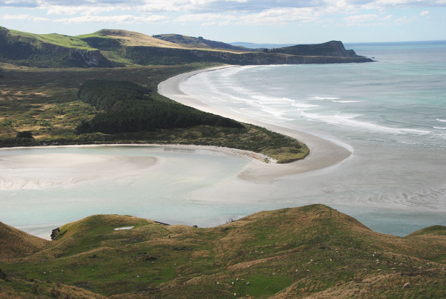 The beautiful curve of the pristine Victory Beach on the Otago Peninsula