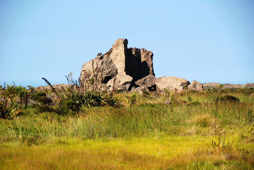 Cutter Rock at Whatipu viewed over the marsh brasses and reeds.