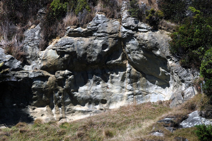 This bed of rock above the limestone is quite distinct and marked with strange holes apparently scoured horizontally into it. (Did the bedding plain once lie flat on a river bed to be scoured by bould